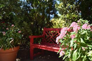 花とベンチ1