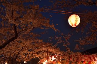 清州城の桜祭り