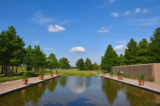 フラワーパーク江南の池
