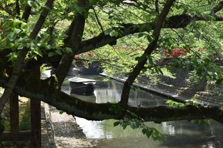 大垣の舟1